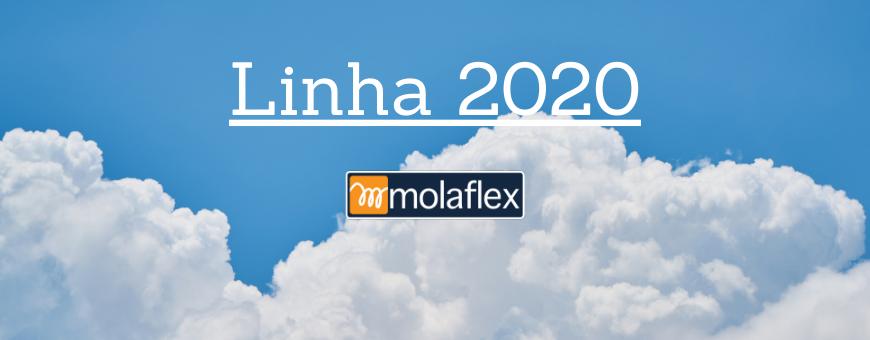 """2020"" Line"