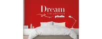Dream Collection Line