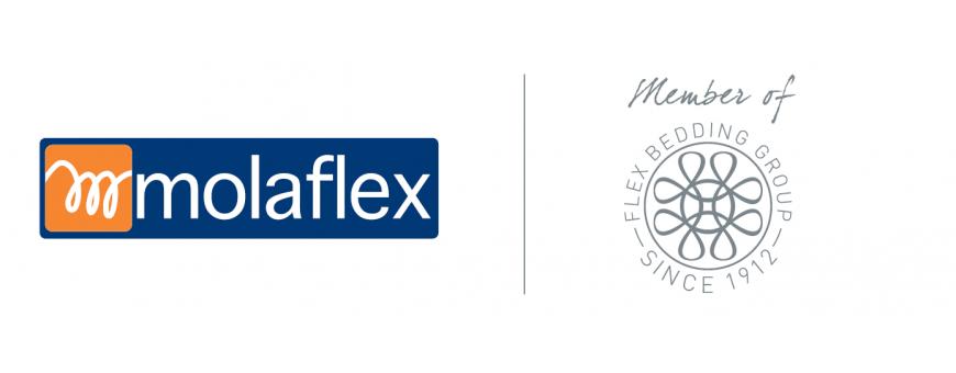 Colchões Molaflex